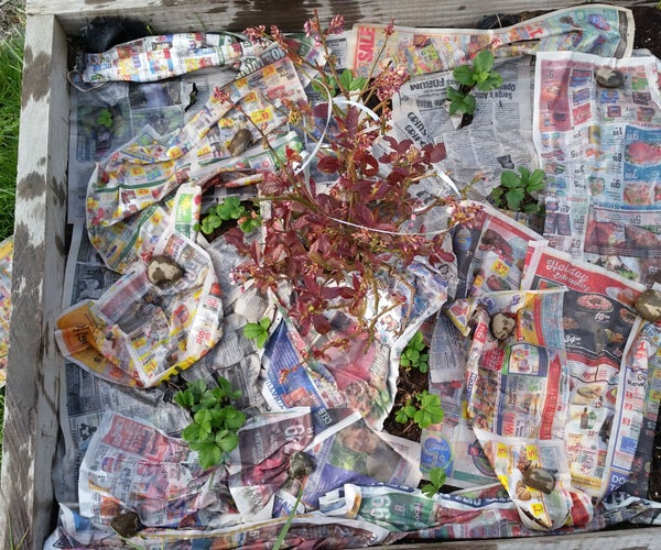 Garden Paper: Recycle and Reduce Weeds  Whoot!!