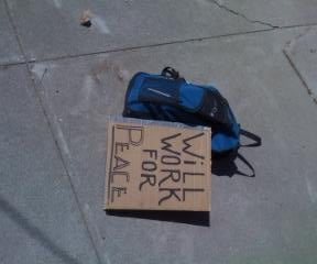 Double Duty Protest Sign/Solar Cooker