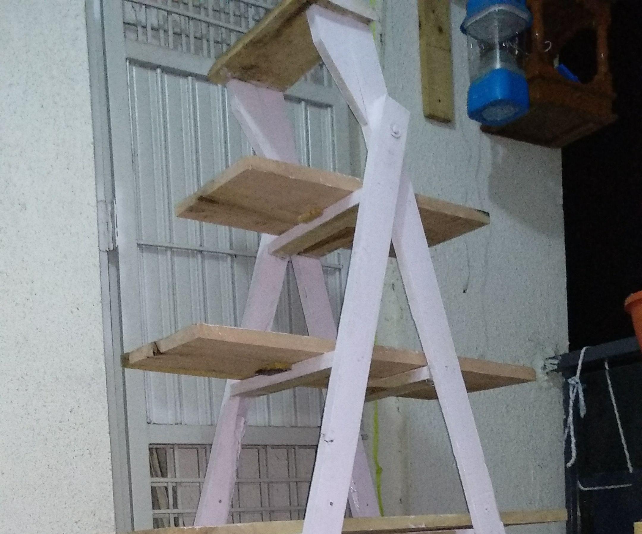 DIY Ladder Shelf Using Inexpensive Materials