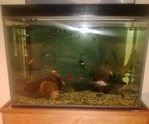 DIY Full Aquarium