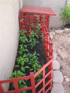 How to Update Your Garden Annually for Flowers, Veggies, or Vines