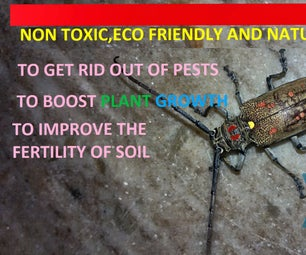 TOXIC FREE,ECO-FRIENDLY FERTILIZERS & PESTICIDES