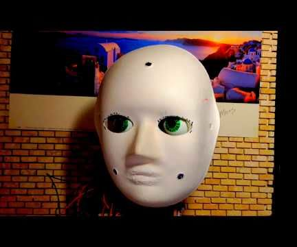 Light Guided Animatronics Head From Recycled and Reused Materials