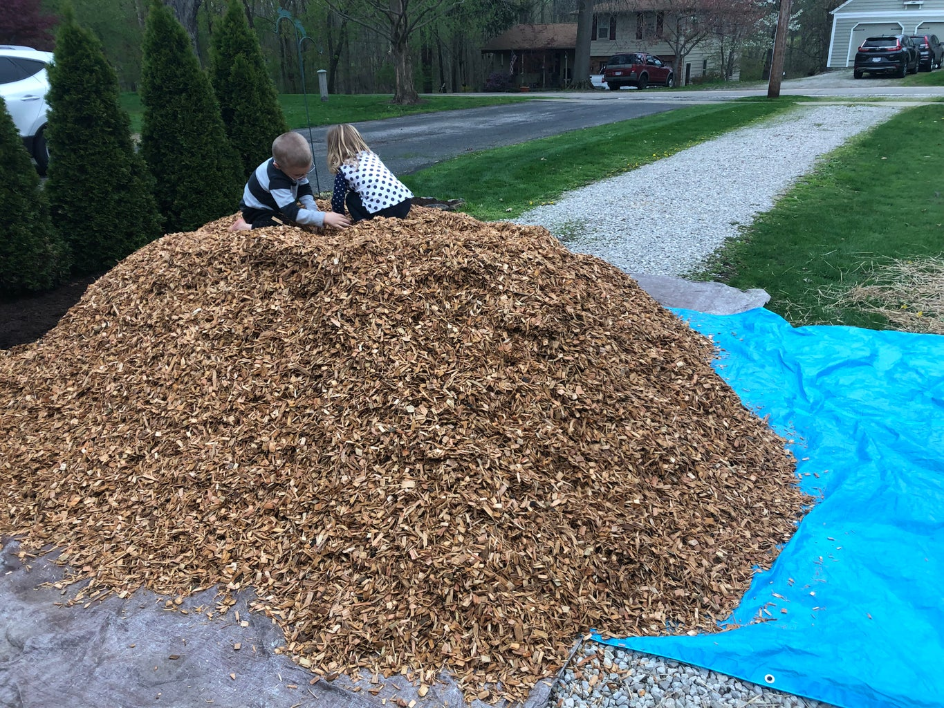 Mulch to Keep the Poison Ivy Down