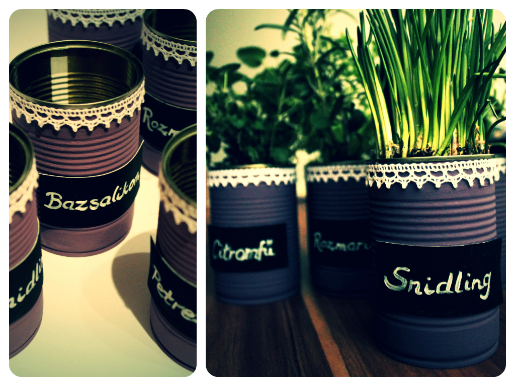 Tin can pots for herbs