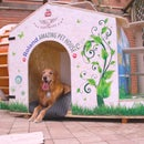 Roland Amazing Dog House