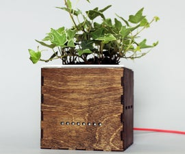 Coughing Planter