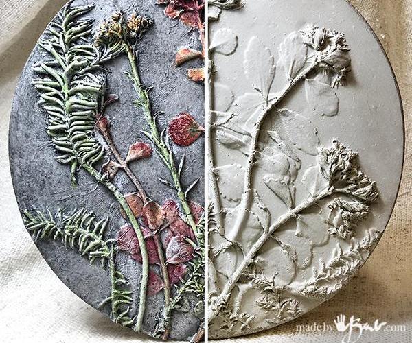 Concrete Relief-Cast Botanical Specimens