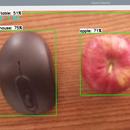 Raspberry Pi Object Detection