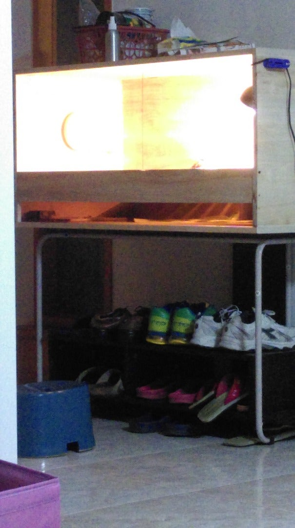 Tortoise's Floating Apartment