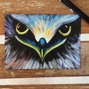 Diy Acrylic Painting of Eagle Eye