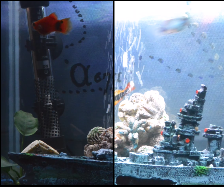 Arduino Based Aquarium Auto Lighting System