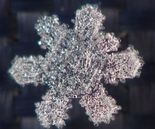 Snowflake Photography
