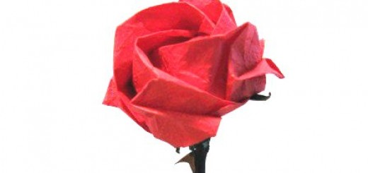 Origami Paper Rose - Video Tutorial
