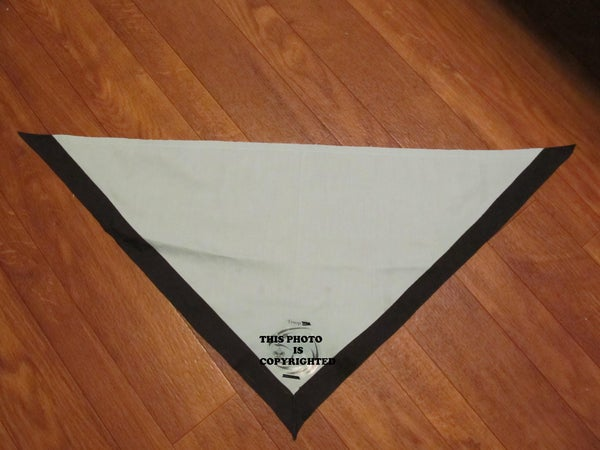 How to Make a Custom Boy Scout Troop Neckerchief.