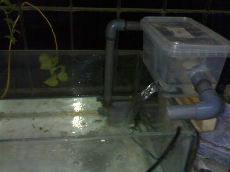 diy aquarium top filter