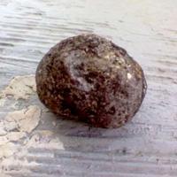 Make a Seed Bomb