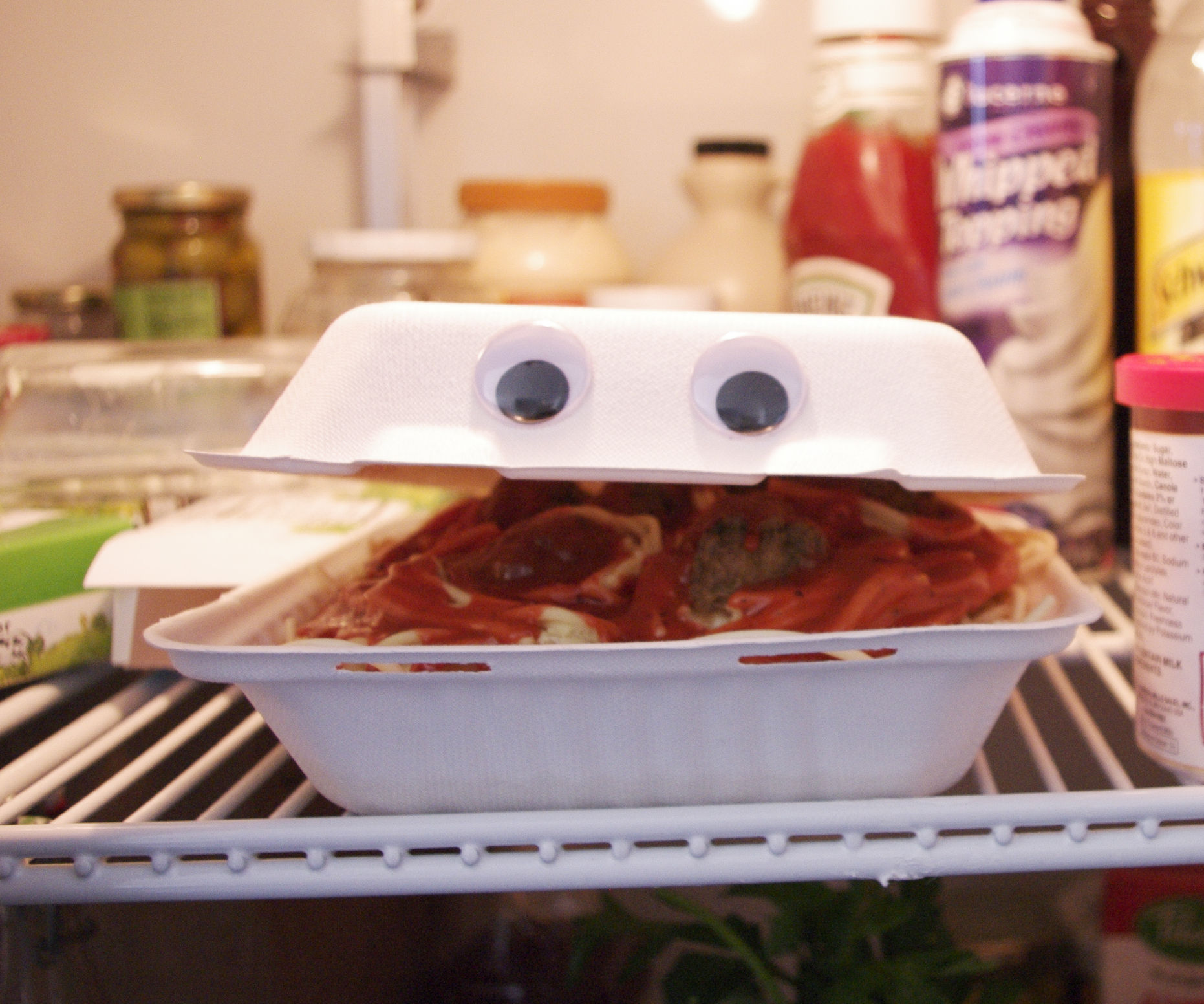 Animatronic Talking Takeout Container