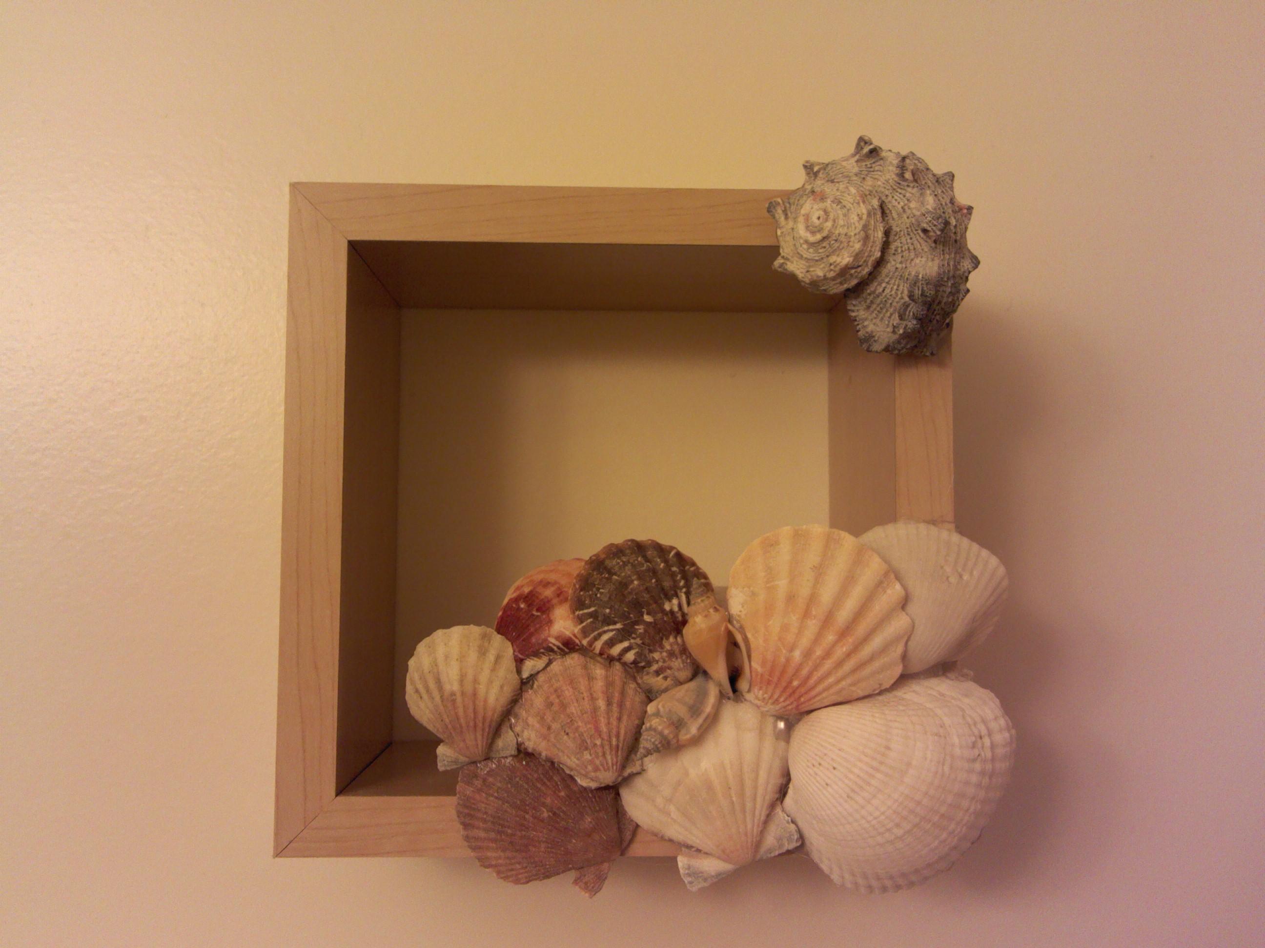 Seashell wall art!