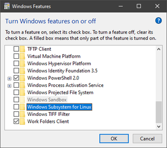 Enable the Windows Feature