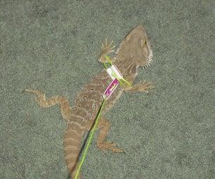 How to Make a Lizard Leash