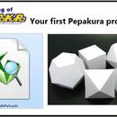 Your first Pepakura project