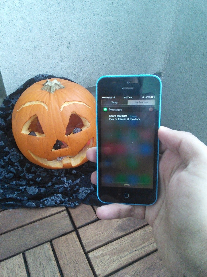 Motion Activated Jack-o-Lantern SMS Notifier