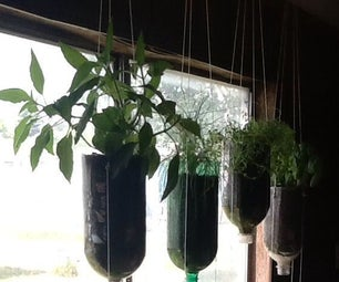 Recycle Your Soda Pop Into Hanging Planter