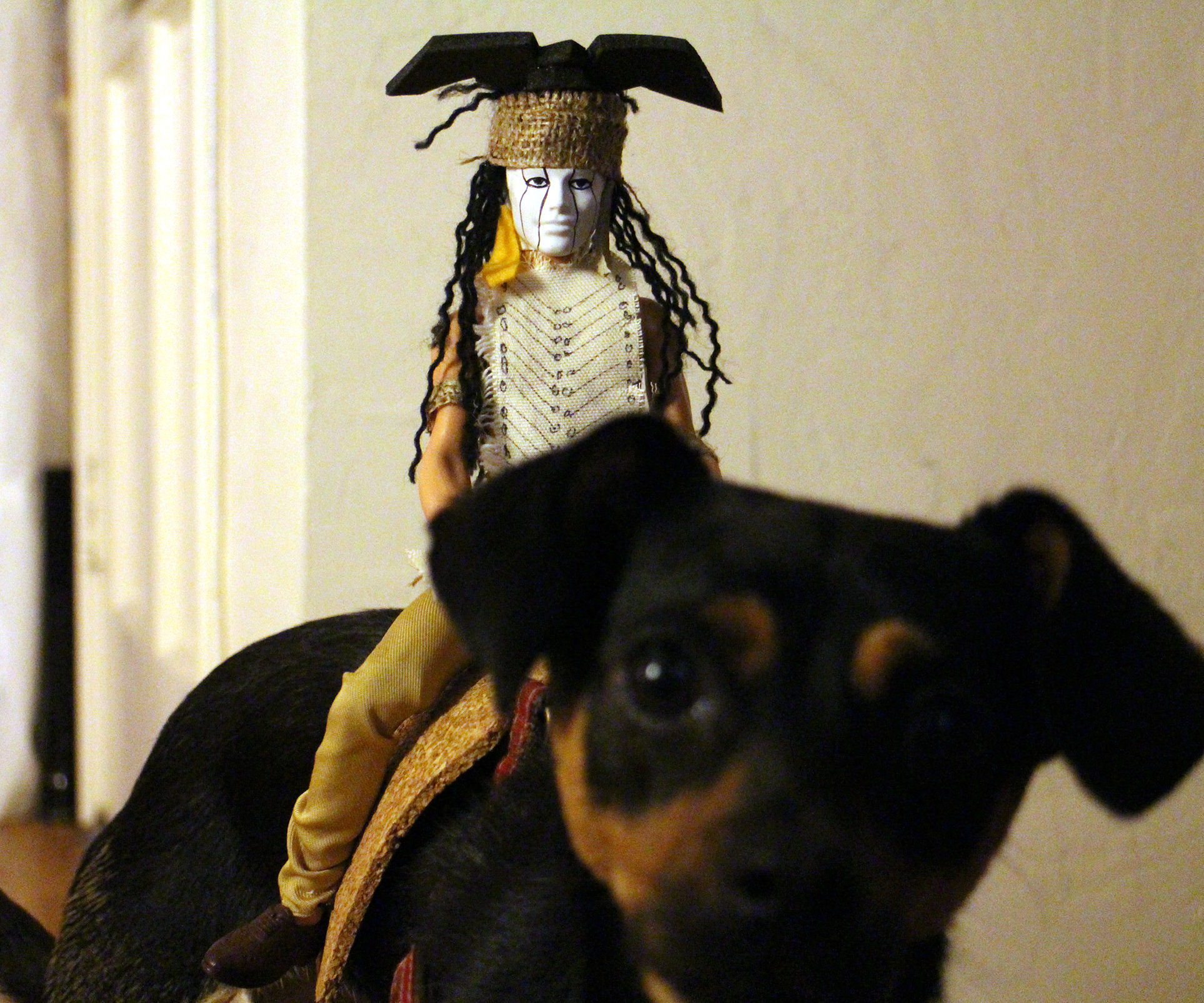 Tonto dog rider costume
