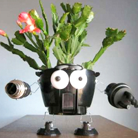 Junkbot Planters