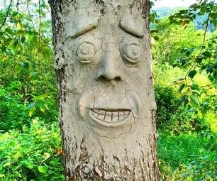 如何在你的树上做4个简单的步骤脸