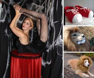 Circus Halloween Costumes
