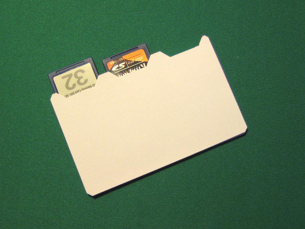 Pipeski's Wallet SD Holder