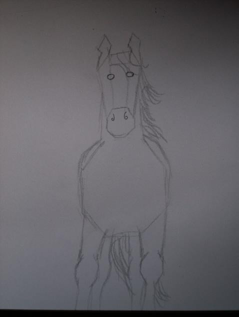 How To Draw Horses 7 Steps Instructables