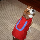 Underdog Cape For Your Dog!!