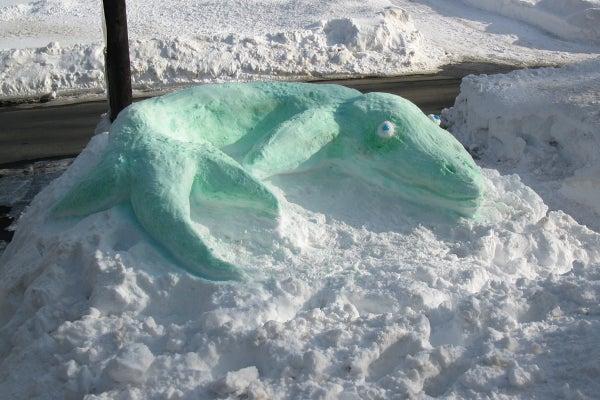 Snosasaurus: a Snow Sculpture