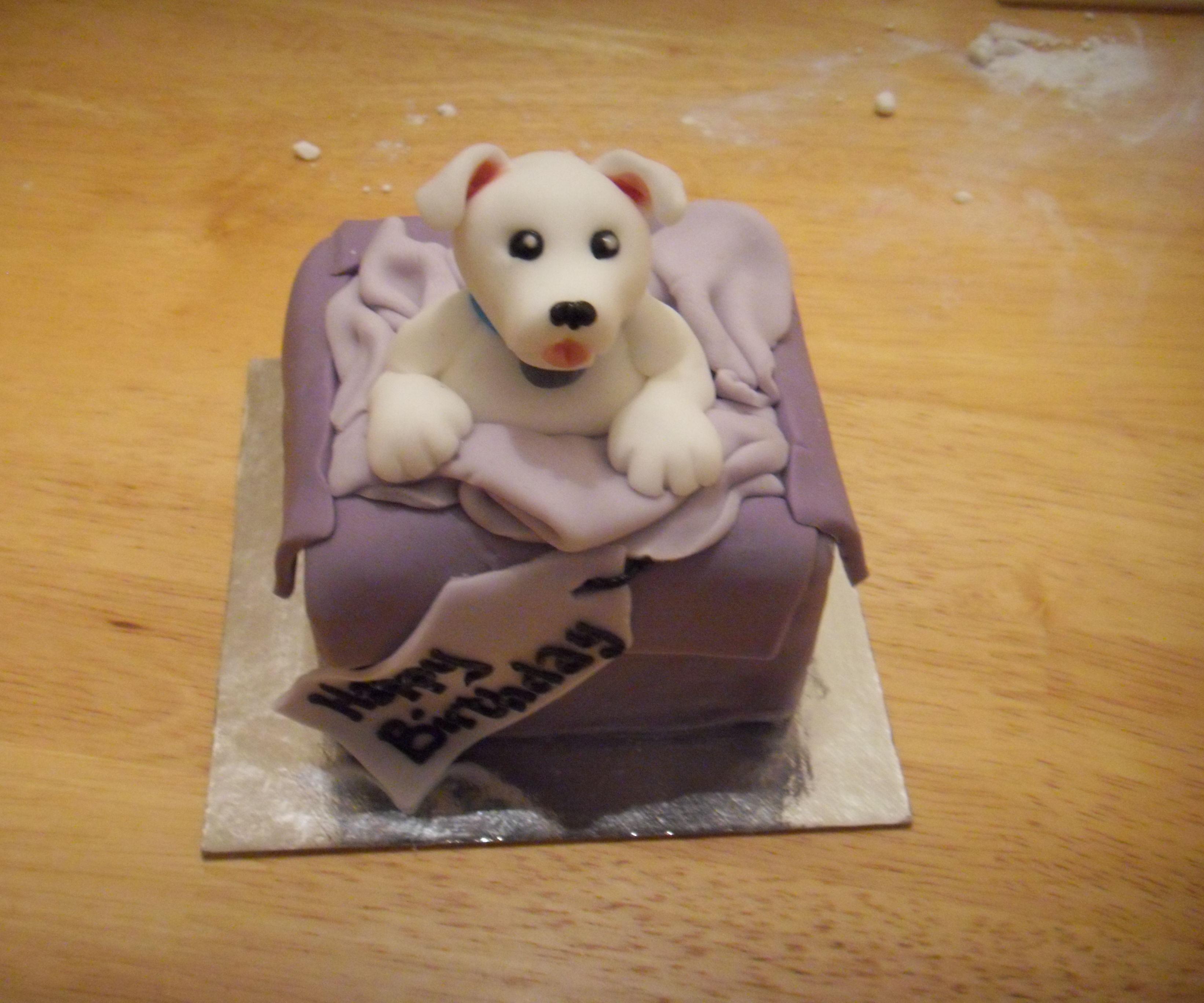 Dog in a parcel mini cake