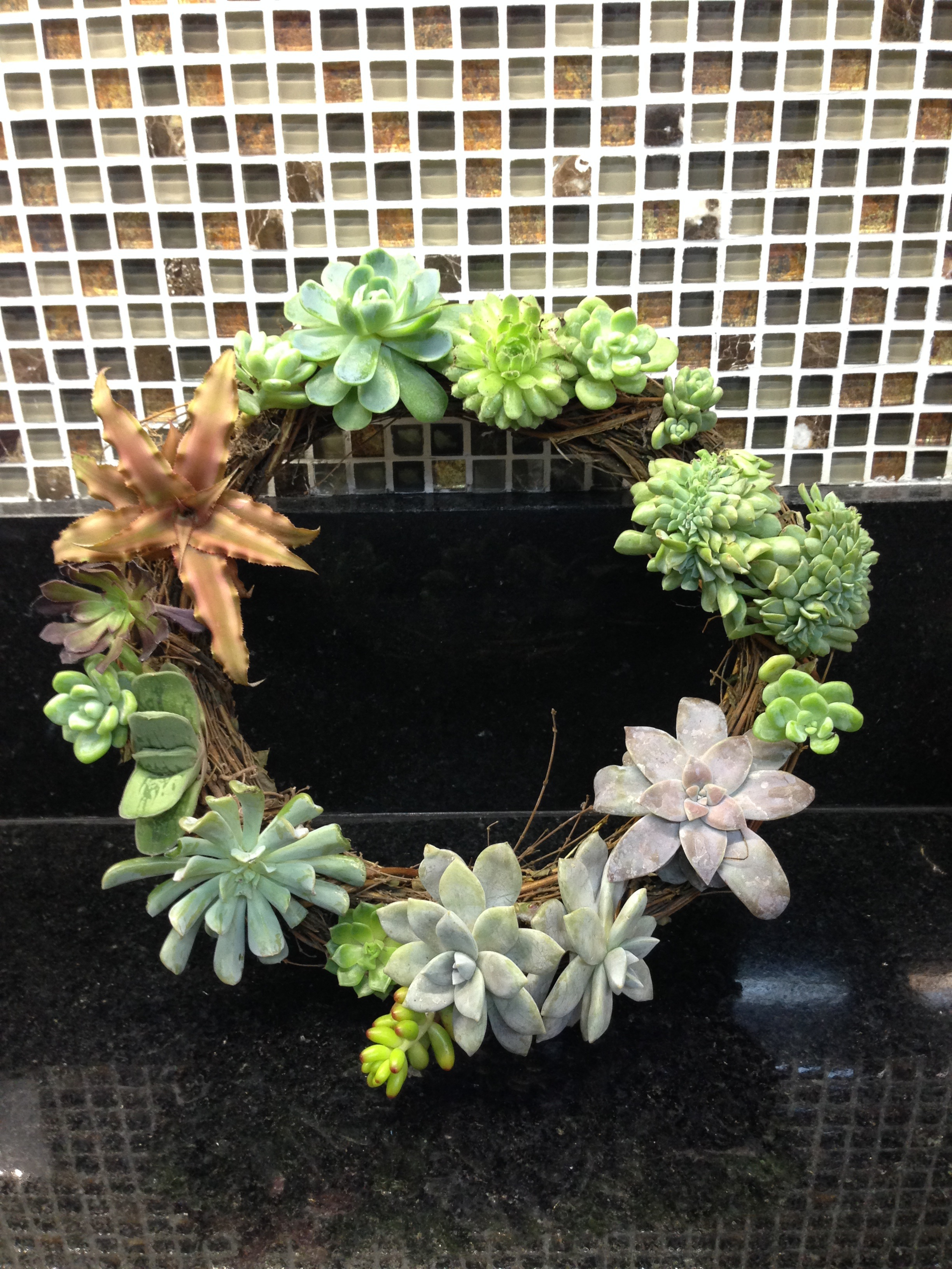 Succulent Twig Wreath