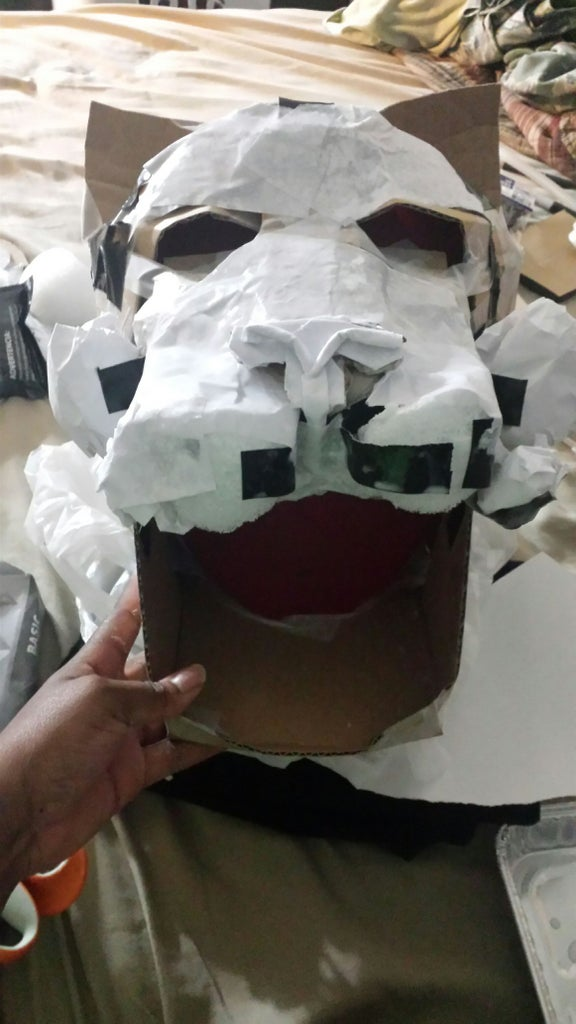 Paper Mache the Eyes, Nose, Ears. Create Cheeks and Cat Mouth.
