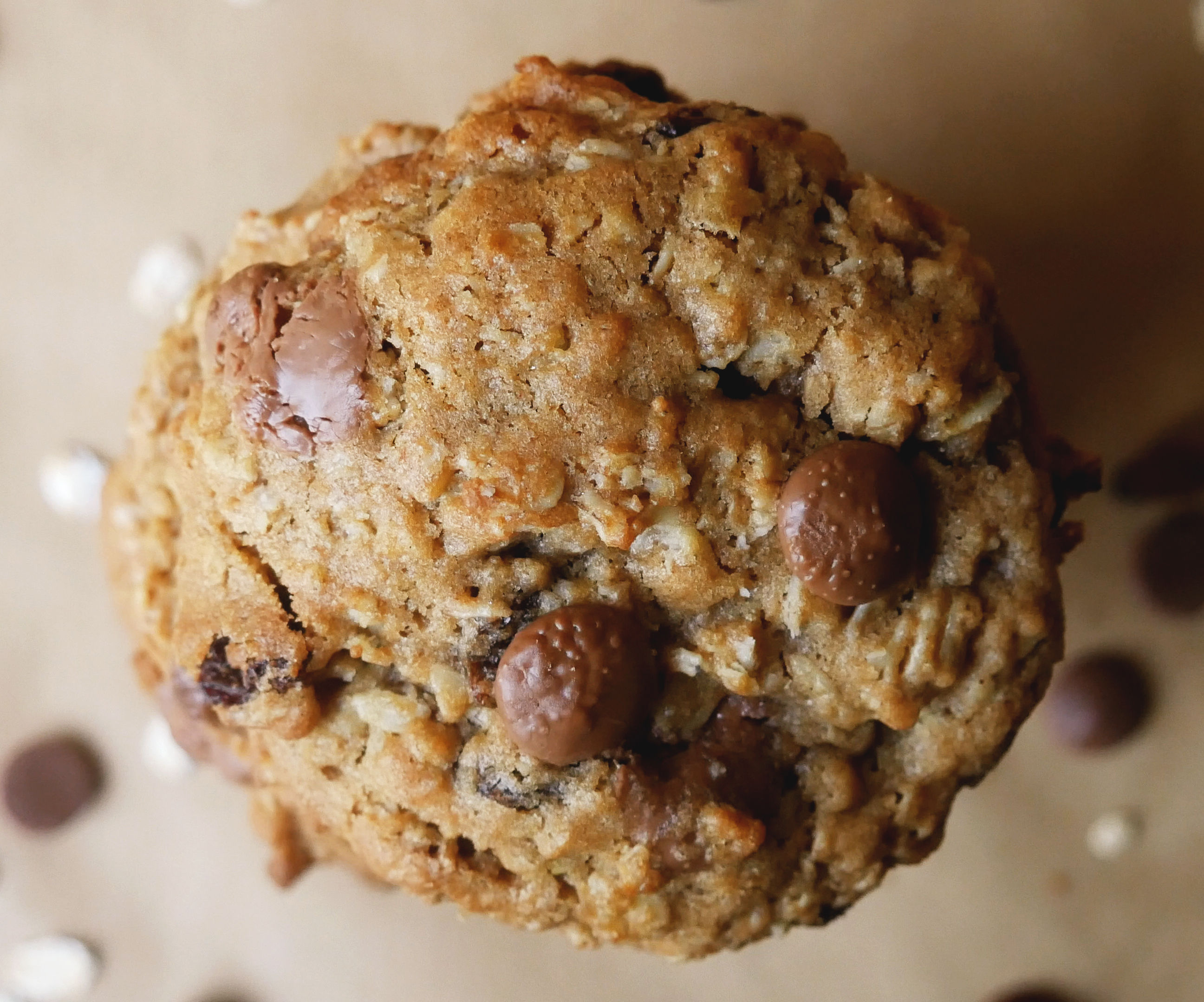 SOFT & CHEWY CHOCOLATE, PEANUT BUTTER & RAISIN OATMEAL COOKIES