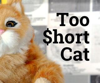 太长的矮猫美元