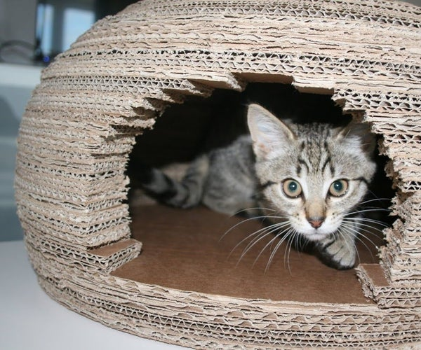 Cardboard Cat Igloo House
