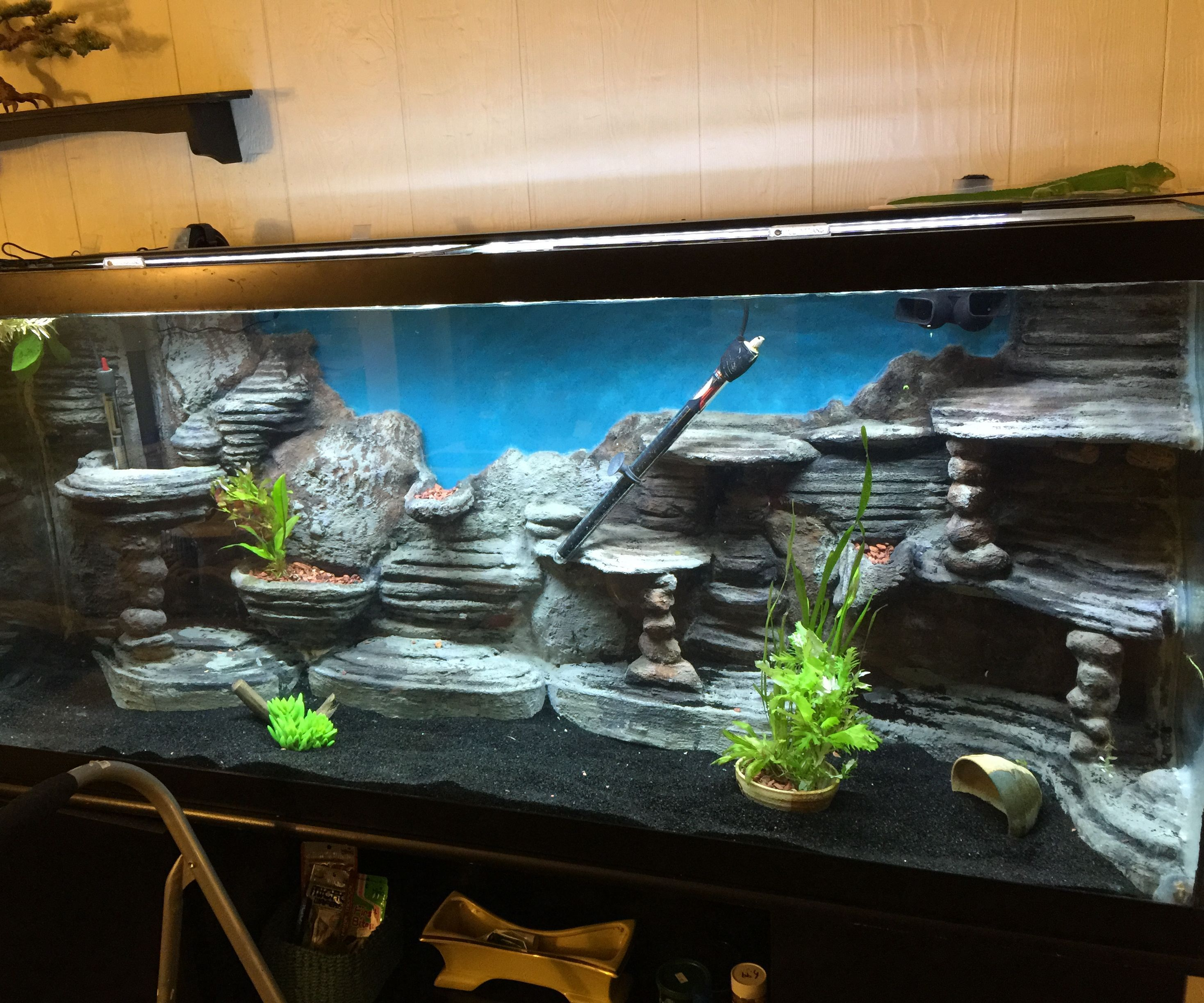 Make a 3D Aquarium Background