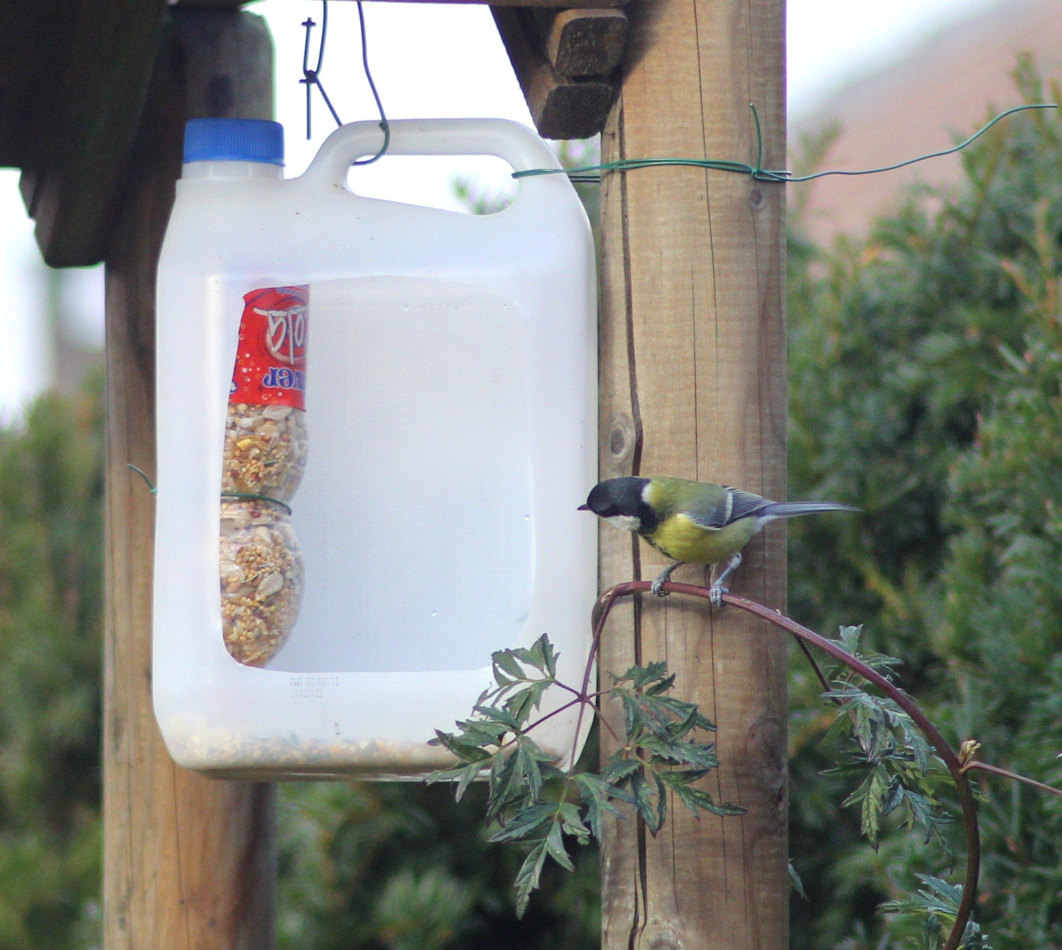 Bird feeder of recycled plastic  -   Pesebre para pájaros