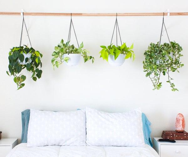 Hanging Plant Headboard