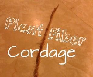 Plant Fiber Cordage
