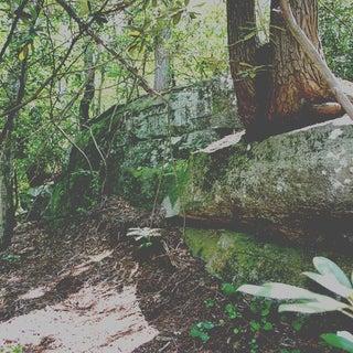Photographing Natural Views