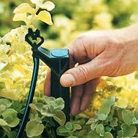 Install Drip Irrigation
