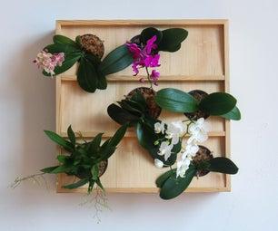 Vertical Orchid Planter
