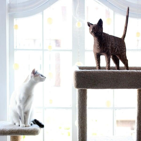 Life Size Cardboard Cat